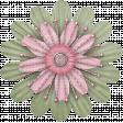 Butterfly Spring - flower 16