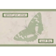 Butterfly Spring - pocket card #4-1, 4x6