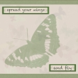 Butterfly Spring - pocket card #4-3, 4x4