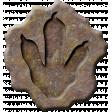 Dino-Mite, mini kit fossil