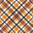 A Little Witchy - plaid paper 2