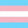 In the Name of Love - Transgender Paper