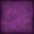 Wild Paper - Purple