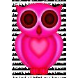 Joy's Owl