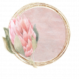 Pretty Botanics Circle Sticker 3