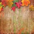 Fall Wonder Paper 1