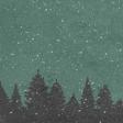 Winter Day Snowy Woods