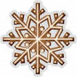 Winter Day Gingerbread Cookie Snowflake