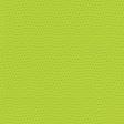 Summer Lovin' July 2017 Blog Train - Green Polka Dots