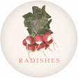 Garden Tales Elements - Radishes Round Tag