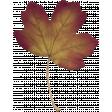 Fall Flurry Leaf