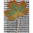Fall Flurry Orange and Green Leaf