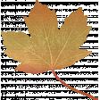 Pumpkin Spice - In the Orchard Golden Leaf