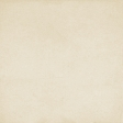 New Day Beige Solid Paper