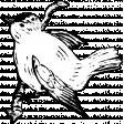 Birds and Branches - Bird 01