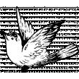 Birds and Branches - Bird 03