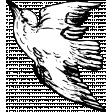 Birds and Branches - Bird 05