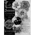 Spring Day Templates - Seed Catalog Cover