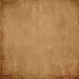 Backyard Archaeology - Plain Paper