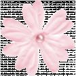 Singin' In The Rain Pink Flower