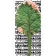 Veggie Table Elements - Leaf