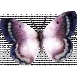 Lavender Fields Butterfly