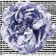 Lavender Fields Purple Flower