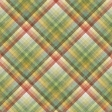 Into The Wild Plaid Paper 01