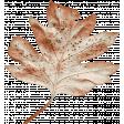 Autumn Bramble Faded Leaf