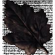 Sweet Blush Leaf