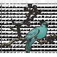 My Tribe Bird