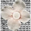Nesting Gray Flower