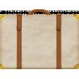 Around The World {In 80 Days} Plain Suitcase Element