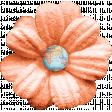 Around The World Peach Flower