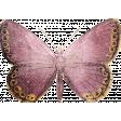 Vintage Memories: Genealogy Butterfly
