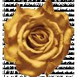 Vintage Memories: Genealogy Yellow Rose