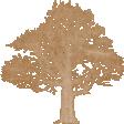 Vintage Memories: Genealogy Mini Kit Light Tree Stamp Element