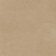 Vintage Memories: Genealogy Tan Solid Paper