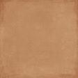 Retro Picnic Tan Solid Paper