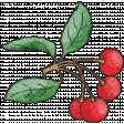 Retro Picnic Cherries