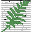 Retro Picnic Green Fern
