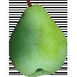 Retro Picnic Pear