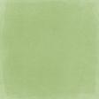 Peach Lemonade Green Solid Paper 2