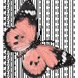 Cherish Butterfly