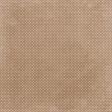 Cherish Tan Polkadots Paper