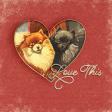 """Furry Cuddles Love This Journal Card 4""""x4"""""""