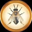 Heard The Buzz? Bee Brad