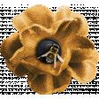 Heard The Buzz? Yellow Flower