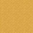 Heard the Buzz? Honeycomb Paper