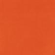 Heard the Buzz? Orange Solid Paper